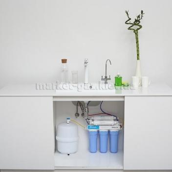 Купить Фильтр обратного осмоса Ecosoft Absolute с минерализатором